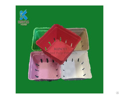 Customized Colorful Paper Pulp Molded Fruit Packaging Box Container