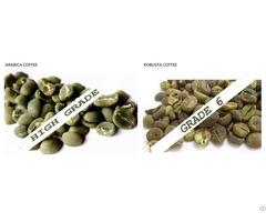 Raw Coffee Bean