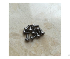 Gr2 Self Tapping Titanium Screws M2 9x6 5mm