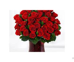 Best Fresh Flowers Seller's