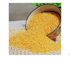 Hybrid Yellow Maize