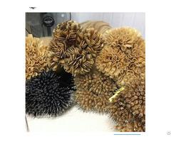 Nano Link Hair Extension Wholesale Price