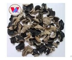 Black Fungus Sellers