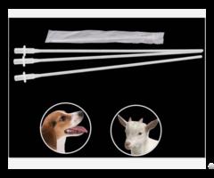 Insemination Catheter For Dog Canine