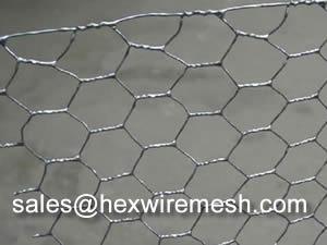 Hexagonal Wire Mesh For Chicken Or Gabion