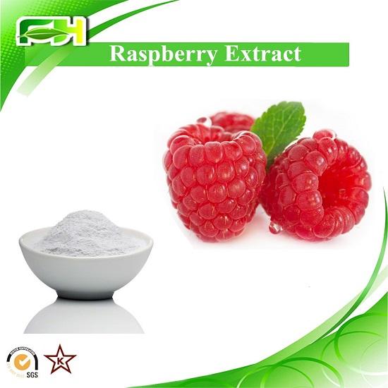 Raspberry Extract Ketone 4 98 99 Ellagic Acid 20 40 60