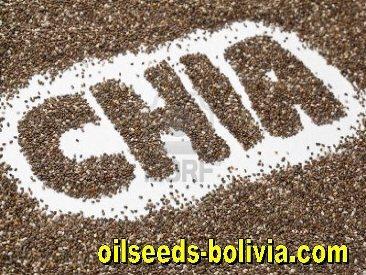 Chia Seeds Bulk Sale