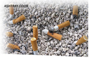 Smelleze Eco Ashtray Smell Removal Granules 2 Lb