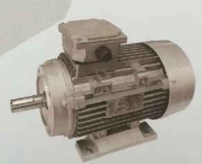 Y2 Series Three Phase Induction Motor Aluminum Die Cast Housing