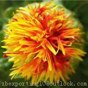 Carthamus Yellow Natural Pigment