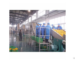 Supply Jump  Bll Pineapple Juice Production Line
