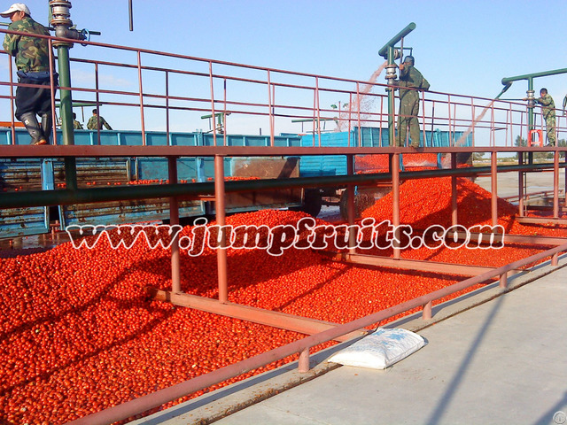 Supply Jump Fqjl Tomato Paste Production Line
