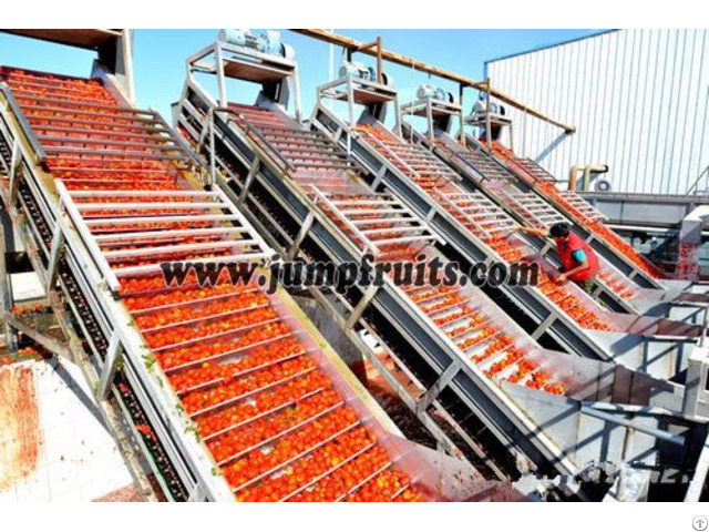 Jump Ketchup Production Line