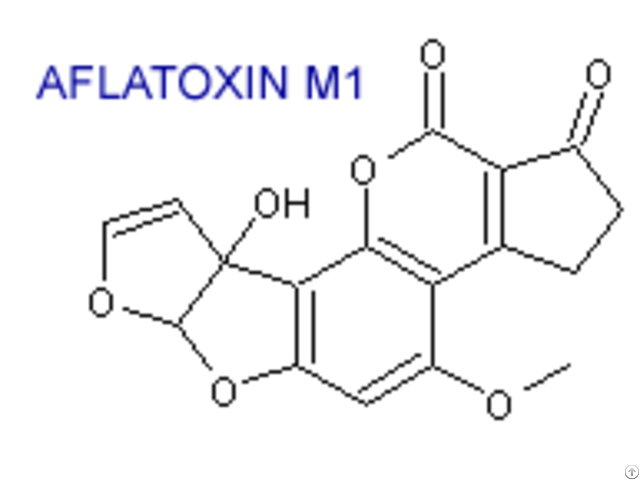 Aflatoxin M1 Standard