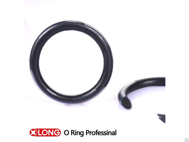 Encapsulated O Ring With Fep Material For Dynamic Motion