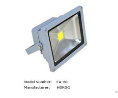 Hokog 20 W Led Flood Light