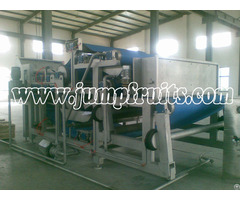 Seabuckthorn Beverage Production Line
