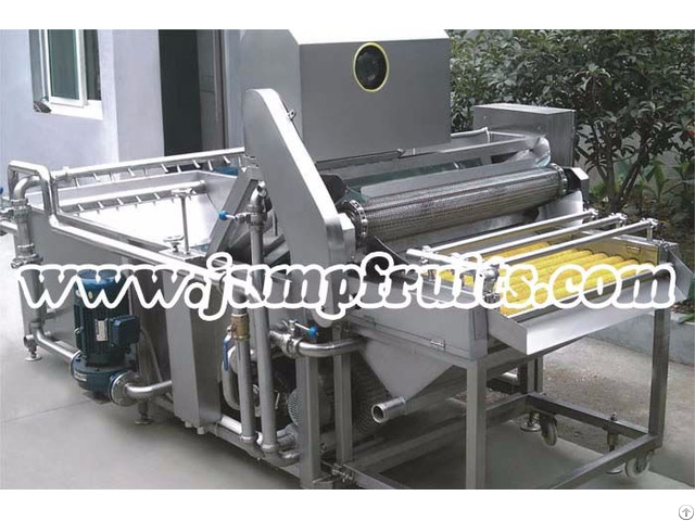 Canned Fruit And Vegetable Production Line