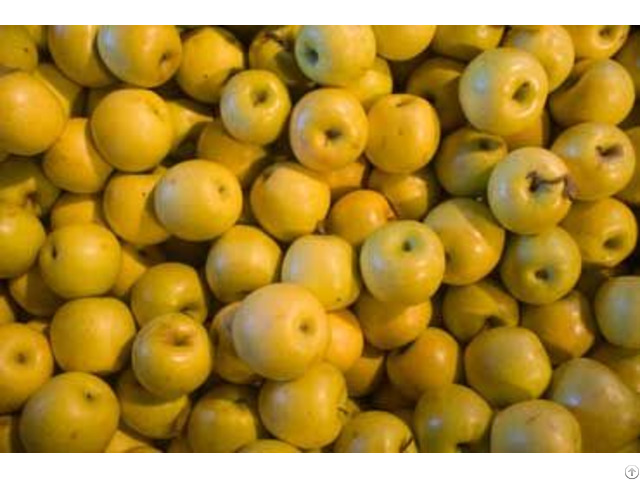 We Sell Delicious Moldavian Apples