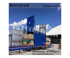 Betterfresh Customized Vacuum Cooling Machine Vegetable Folwer Cooler