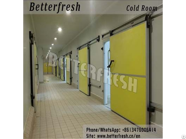 Manufacture Betterfresh Refrigeration Cold Room Vegetable Storage For Fresh Products