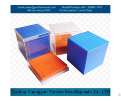 Plastic Injection Lego Brick Mould