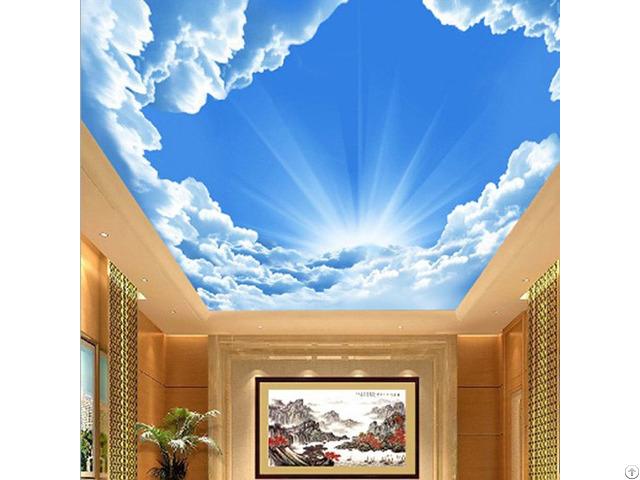 3d Ceiling Sky Nature Theme Wallpaper Mural Customize