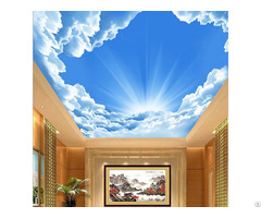 3d Ceiling Sky Nature Theme Wallpaper Mural Customize