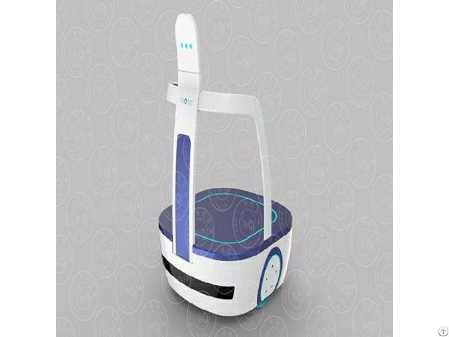 Airport Autonomous Mobile Robot