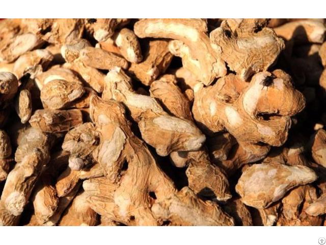 Chilli Dry Turmeric Ginger