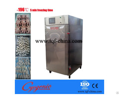 Iqf Cabinet Freezer 200kg Hour
