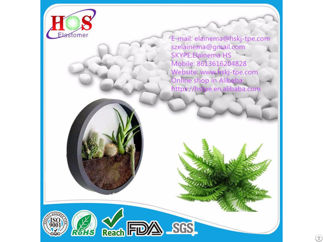 Tpe Material For Artifical Plant Decorative Plants
