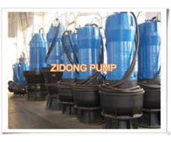 Qz Submersible Axial Flow Pump
