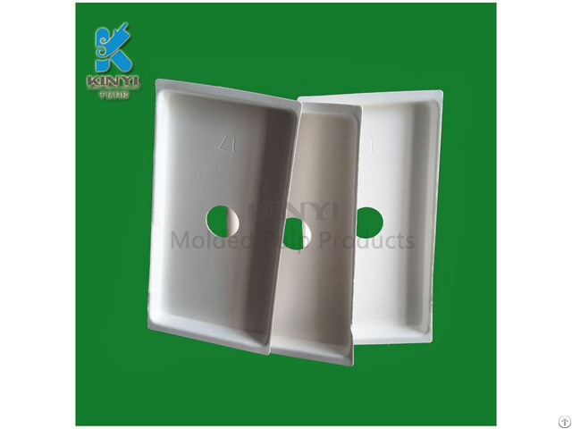 Bagasse Pulp Packaging I Pad Carrier Container