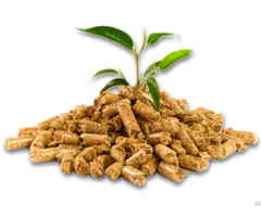 Wood Pellets 6 8mm For Power Plant Biomass Heating System