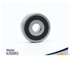 The High Quality Bearing Products 6300 2z Rs