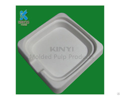 High Quality Bagasse Pulp Tray Electronic Packaging Innserts