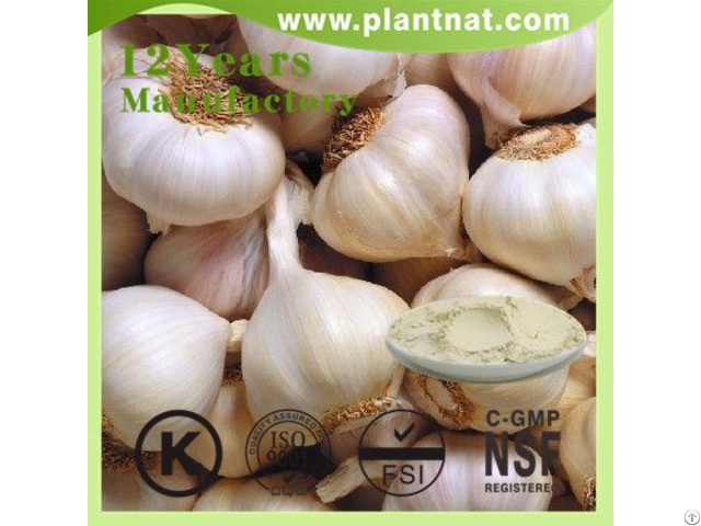 Allicin Powder Garlic Extract Feed Additive