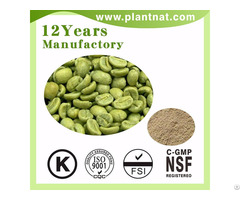 Green Coffee Bean Extract Chlorogenic Acid