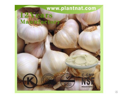 Herbal Garlic Extract