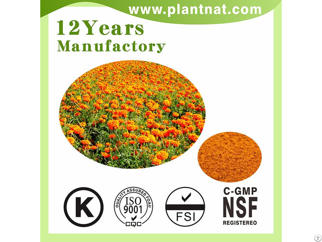 Lutein Marigold Flower Extract Food Color