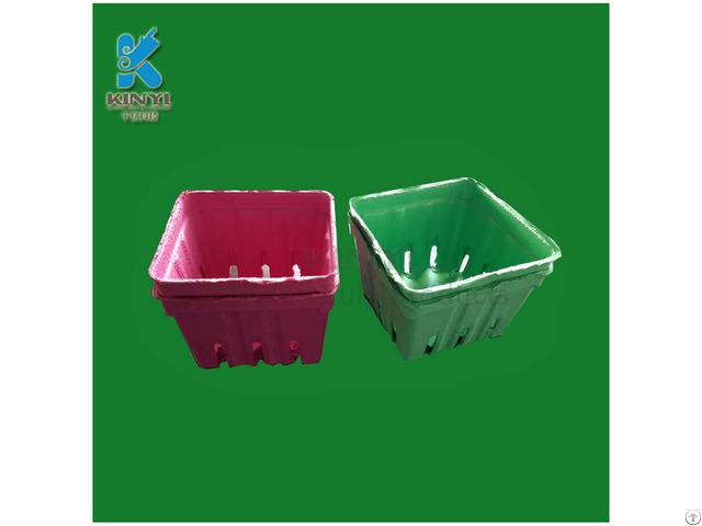 Disposable Paper Pulp Fruit Packaging Box