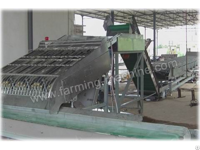 Full Automatic Fresh Corn Processing Line