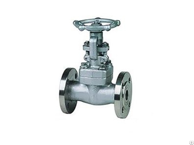 American Standard Small Bore Forged Steel Power Plant Gate Valve
