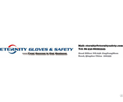 Eternity Safety And Gloves