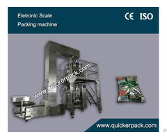 High Speed Snacks Packaging Machine
