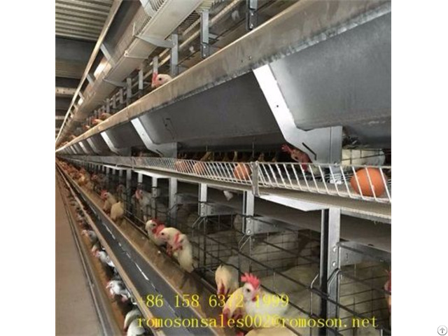 Poultry Layer Cage System Shandong Tobetter Superior Performance