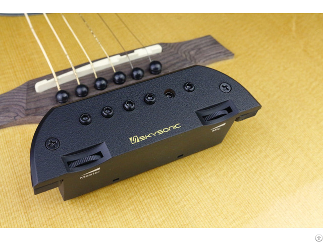 Soundhole Pickup T 903