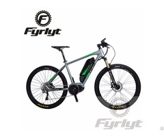 250w 36v Mid Motor Electric Bicycle