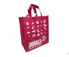 Non Woven Reusable Shopping Grocery Bag